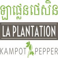 Laplantation Management Co., Ltd.