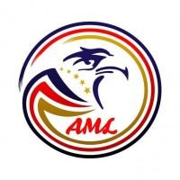 American Lubes Co., Ltd.